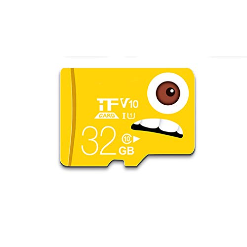 Alician TF (MicroSD) Memory Card C10 High Speed Enhanced Edition Driving Recorder Monitors Mobile Phone Memory Card 32GB