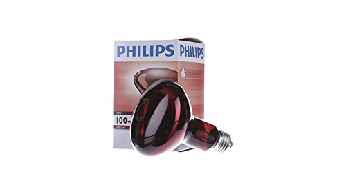 Philips R95 100W E27 Infra Red Bulb (Red)
