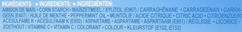 ASSANIS Fresh Feuilles d arôme Menthe Fraîche Haleine Fraîche - 24 feuilles - Lot de 6 24