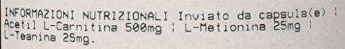 Prozis Acetil L-Carnitina, 90 Capsule