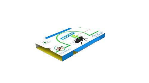 Gumtree Non Poisonous & Eco-Friendly Cockroach Glue Trap (10 Nos)