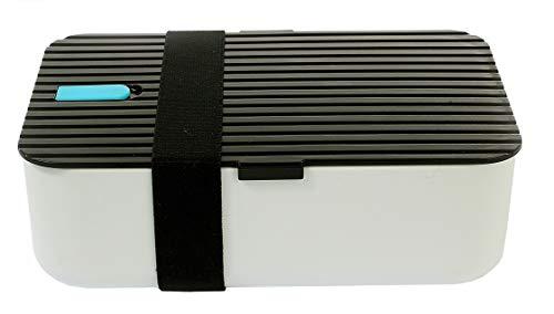 La Jolíe Muse Bento Lunchbox Kinder Freundlich BPA Frei Mikrowellenfest luftdicht Auslaufsicher 2 Unterteilungen 1L