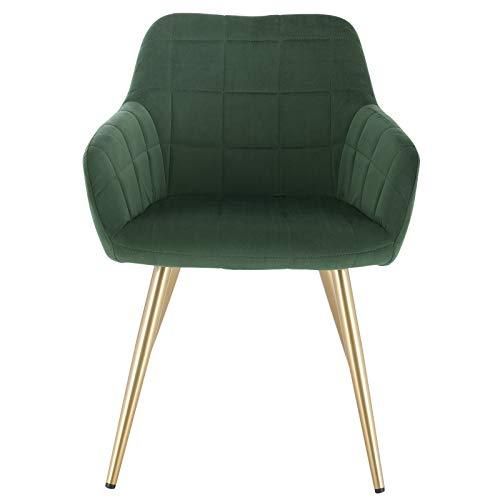 eSituro Poltrona Moderna in Velluto Verde, Sedia con Schienale Braccioli per Sala da Pranzo Camera da Letto SDC0287-1