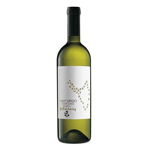 Cantina Rotaliana di Mezzolombardo Trentino Pinot Grigio Doc, 2015-6 Confezioni da 750 Ml