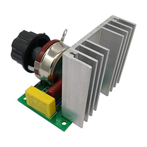 Pudincoco AC220V / 4000W Motore elettrico ventilatore regolatore di velocità regolatore di...