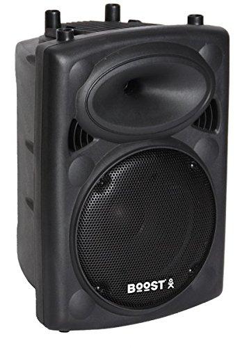Ibiza Sound & Light SLK10 - Bafle pasivo, color negro