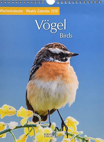 Vögel 2019: Foto-Wochenkalender