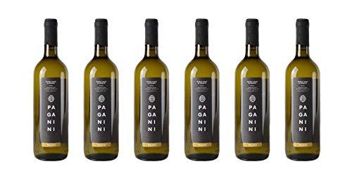 6 bottiglie di Riviera Ligure di Ponente Pigato DOC   Cantina Paganini   Annata 2017