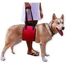 Arnés de soporte para perros Jhua, arnés de cabestrillo para rehabilitación y ayuda con la movilidad, para levantar perros de edad o cachorros
