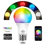 HaoDeng Bluetooth Mesh Smart LED Lampe 40W RGBW, Dimmbar 16 Mio Farben Beleuchtung und DIY Leuchtmittel, Musik & Mic Innenbeleuchtung E27 Bulb kompatibel mit Alexa, Google Home