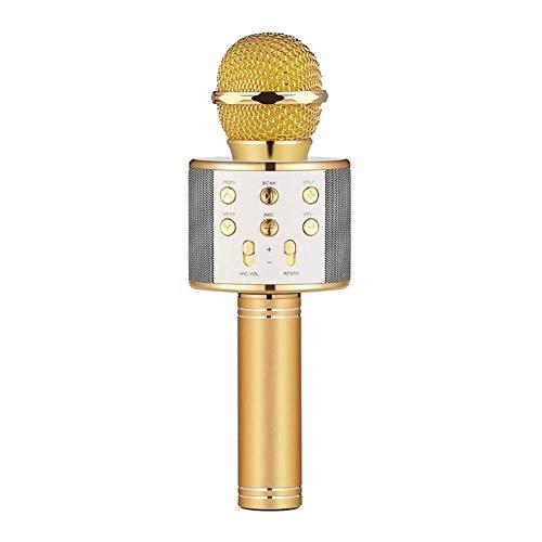 ZYG.GG Inalámbrico Bluetooth Karaoke Micrófono Portátil Familia KTV Función Anti-oído en Tiempo Real Apoyo Tarjeta TF Adecuado para iPhone,PC y Todos los teléfonos Inteligentes,Gold