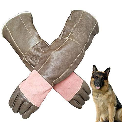 QHGao Guanti Anti-Animali Addensare Guanti Protettivi in Pelle Anti-Cat Grab Guanti per Cani da...