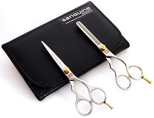 Set di forbici e forbici da sfoltitura per parrucchieri, 14cm, custodia di presentazione