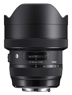 Sigma F4 DG AF HSM Art - Objetivo para cámara para réflex (12-24 mm) color negro