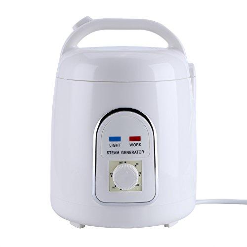 Zerodis Sauna Steamer, 220V 1.8L Portable Khan Steam Sauna Generator Pot Explosion-Proof Evaporador de la máquina para el hogar SPA Shower, Relajación del cuerpo, Face Beautifying(220V)
