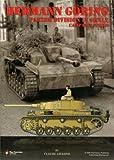 Hermann Göring Panzer Division in Sicily