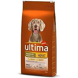 Ultima Cibo per Cani Medium Maxi Adulto con Pollo, 12 kg