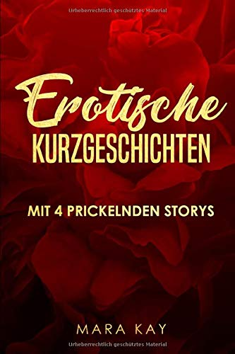 4 erotische Kurzgeschichten: Sexgeschichten ab 18 unzensiert