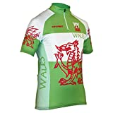 Impsport Wales National Cycling Jersey (Large Men's 40'' Chest)
