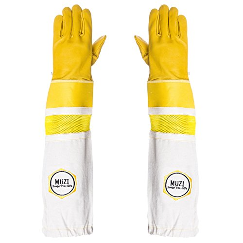 Guanti di apicoltura in pelle di mucca tela e guanti gommati giacche elasticizzate (medio)