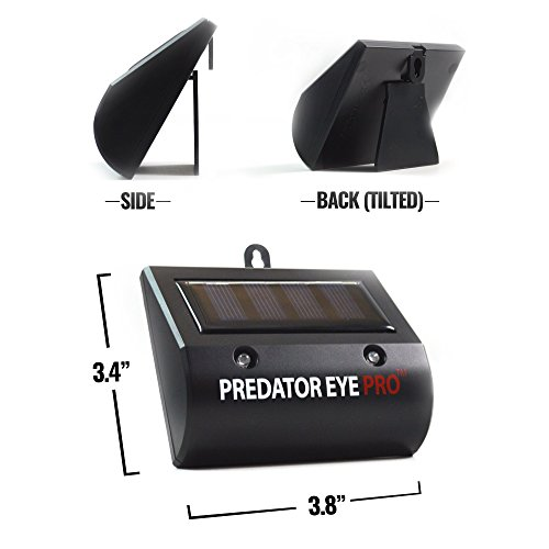 Aspectek Predator Eye Pro Night and Day Solar Animal Repeller - Animal Deterrent Light Night Guard Protects from Nocturnal Animals, Birds, Raccoons, Owls, Wolves, Deer, Foxes, Dogs, Cats (two pack)