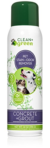 Professional Strength Concrete and Grout Pet Non-Toxic Stain and Odor Remover, Deodorizer, for Dogs and Cats, 14 Ounce