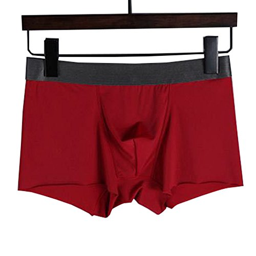 Fashionwu Briefs for Male 3D Sexy Ice Silk Boxer Shorts Comfortable Lingerie Briefs Gift Red