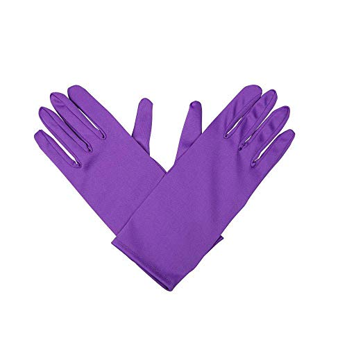 Wicked Gents Gloves - Purple Gloves