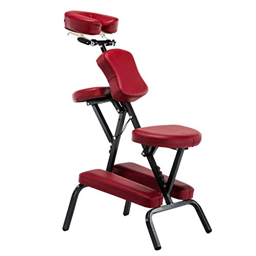 Homedics - Poltrona per Massaggi, Portatile, Regolabile, con Borsa per Il Trasporto, per Massaggi, Ultra Resistente, Leggera, Pieghevole