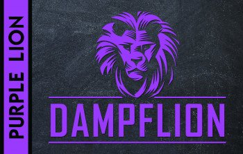 Dampflion Aroma 20ml / Purple Lion
