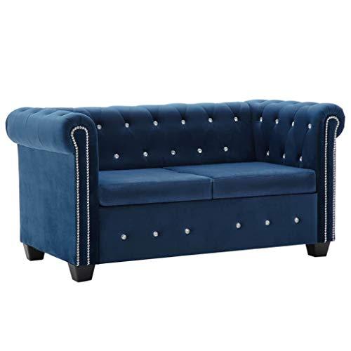 vidaXL Divano Chesterfield 2 Posti in Velluto Blu Sdraio Sofa Arreddo Salotto
