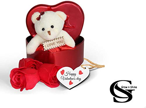 GS Grow n Shine Heart Shaped Red Box with Soft Teddy and Scented Roses in Random Colors Perfect for Valentine's Day/Anniversary Pack