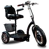 SABWAY Tricycle électrique | IDÉAL pour Personnes HANDICAPÉES, À MOBILITÉ RÉDUITE | Livraison IMMÉDIATE | Scooter ÉLECTRIQUE 3 Roues
