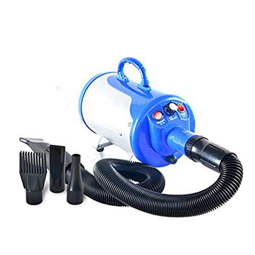 Macchina per L'acqua di Petodonio Ozono Cane Asciugacapelli Pet Speciale Ad Alta Potenza Ultra Silenzioso Grande Piccolo Cane (Colore : A)