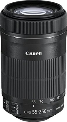 Canon EF-S 55-250 mm f/4-5.6 IS STM - Objetivo para canon (distancia focal 55-250mm, apertura f/4-32, zoom óptico 4.55x,estabilizador, diámetro: 58mm) negro