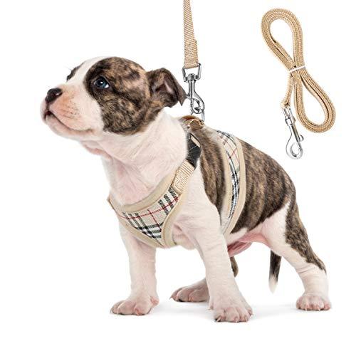 Unihubys Imbracatura per Cani da Imbracatura per Cani di Piccola Taglia Imbottitura per Cani da Rete...