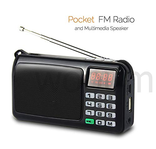 SaleOnTM Rechargeable Outdoor Fm Radio Speaker Portable Speaker with MP3 TF Memory Card USB Handsfree Jack, Led Light Torch Multimedia Speaker with Antenna and led Clock 969