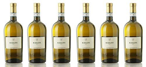 Il Lugana DOC Pasini, 0.75 L 6 Confezioni da 750 ml