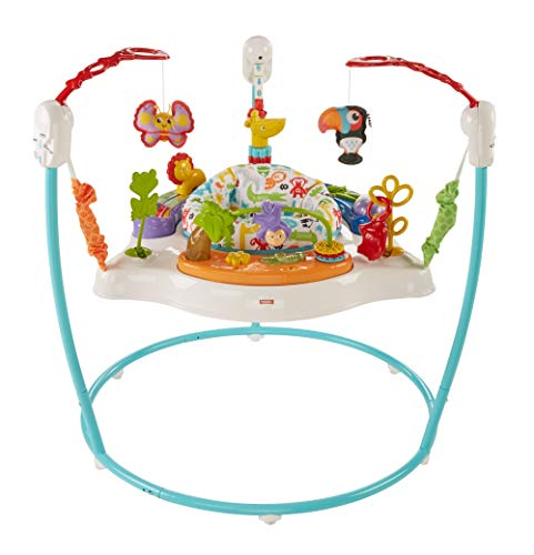 Fisher-Price Animal Activity Jumperoo (Blue)