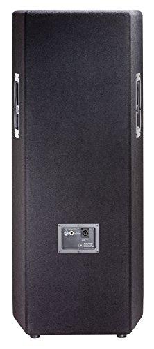 JBL JRX225 Enceinte passive pour Sonorisation 500 W Noir 6