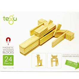 24Piece Tegu Magnetic Wooden Block set, Jungle