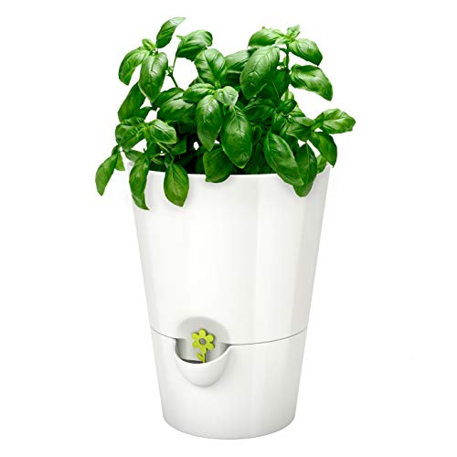 Emsa 514244 Kräutertopf für frische Kräuter, Selbstbewässerung, Wasserstandsanzeiger, Ø 13 cm, Weiß, Fresh Herbs