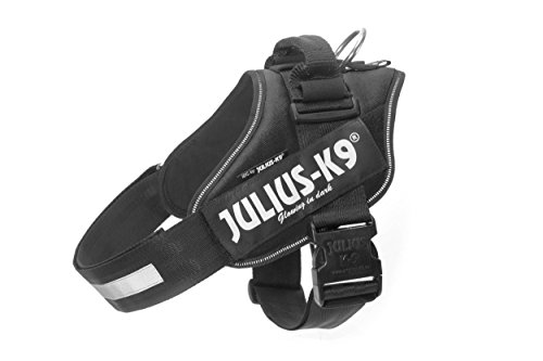 Julius-K9 16IDC-P-2 IDC Power Harness, Tamaño 2, Negro