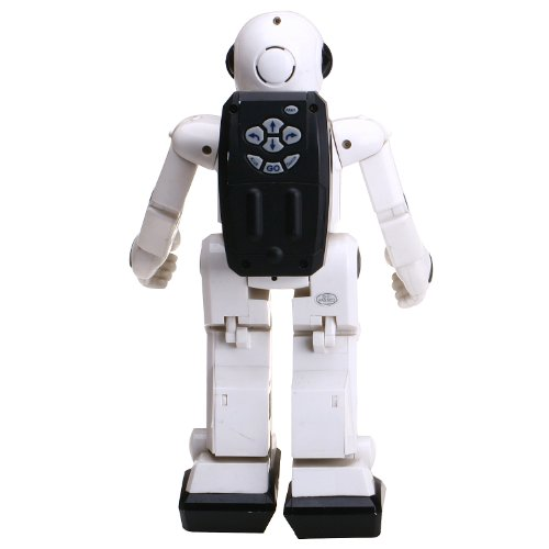 41q8xjBofvL - World Brands Robot Radio Control
