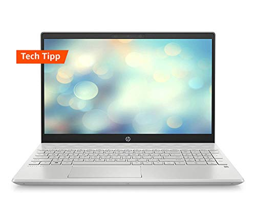 HP Pavilion 15-cs2026ng (15,6 Zoll / Full HD IPS) Laptop (Intel Core i5-8265U, 8 GB DDR4, 512 SSD, Nvidia GeForce MX130 2 GB DDR5, Windows 10 Home) silber