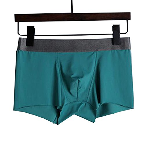 DishyKooker Male 3D Sexy Ice Silk Boxer Shorts Comfortable Lingerie Briefs Gift,Super Soft and Cpmfortable Cyan XXL