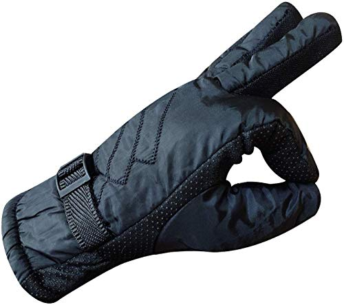 DIGITAL SHOPEE Warm Winter Riding Gloves -20 Temperature Snow Proof Protective Gloves for Men, Boys, Male Universal Size (Blue)