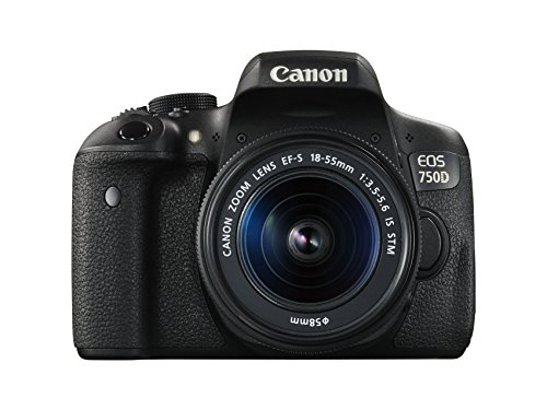 Canon EOS 750D Kit Fotocamera Reflex Digitale da 24 Megapixel con Obiettivo EF-S 18-55 mm IS STM,...