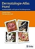 Dermatologie-Atlas Hund: Krankheitsbilder und typische Verteilungsmuster
