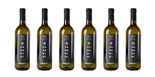 6 bottiglie di Riviera Ligure di Ponente Vermentino DOC   Cantina Paganini   Annata 2017